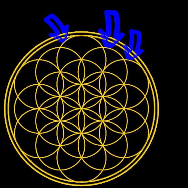Bild von der Blume des Lebsn mit Pfeilen