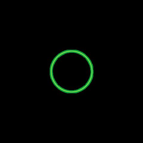 Bild grüner Kreis