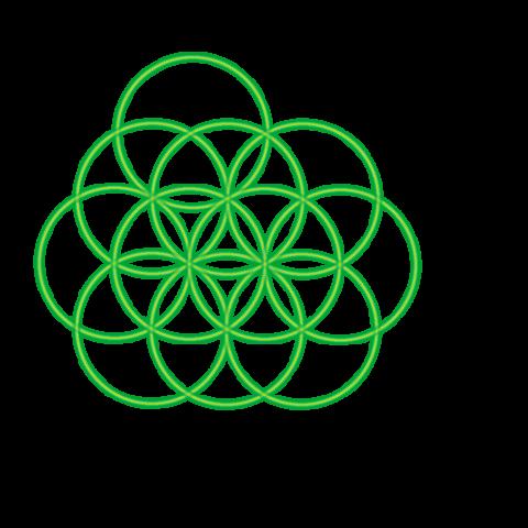 Bild 11. grüner Kreis