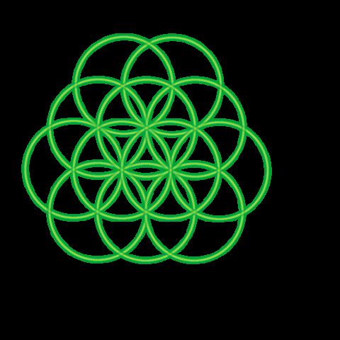 Bild 12. grüner Kreis