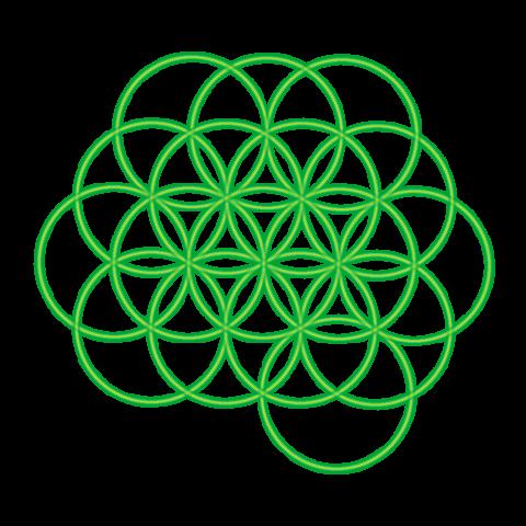 Bild 17. grüner Kreis