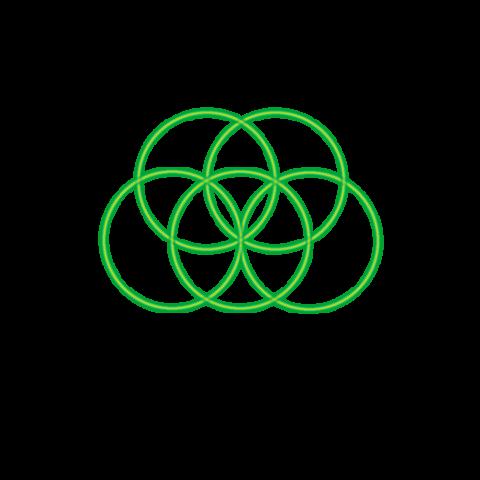 Bild 5. grüner Kreis