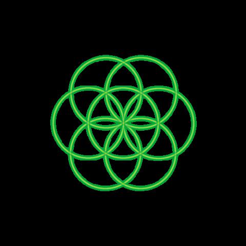 Bild 7. grüner Kreis