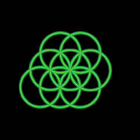Bild 8. grüner Kreis