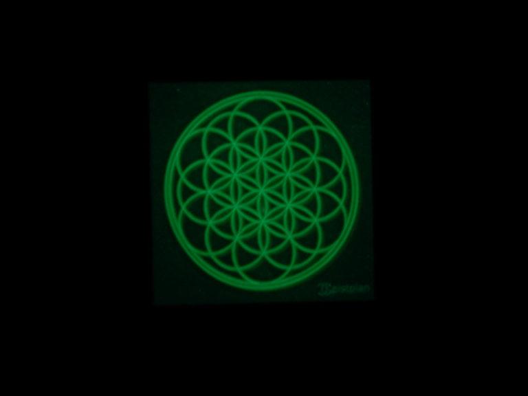 Blume des Lebens leuchtet in der Nacht