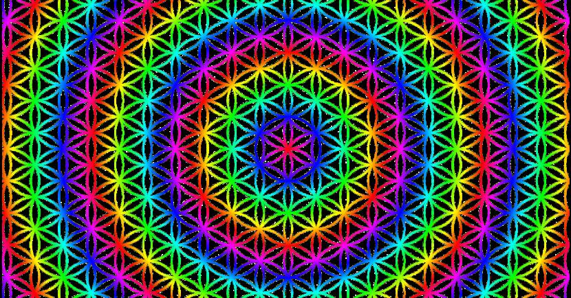 buntes Muster von der Blume des Lebens