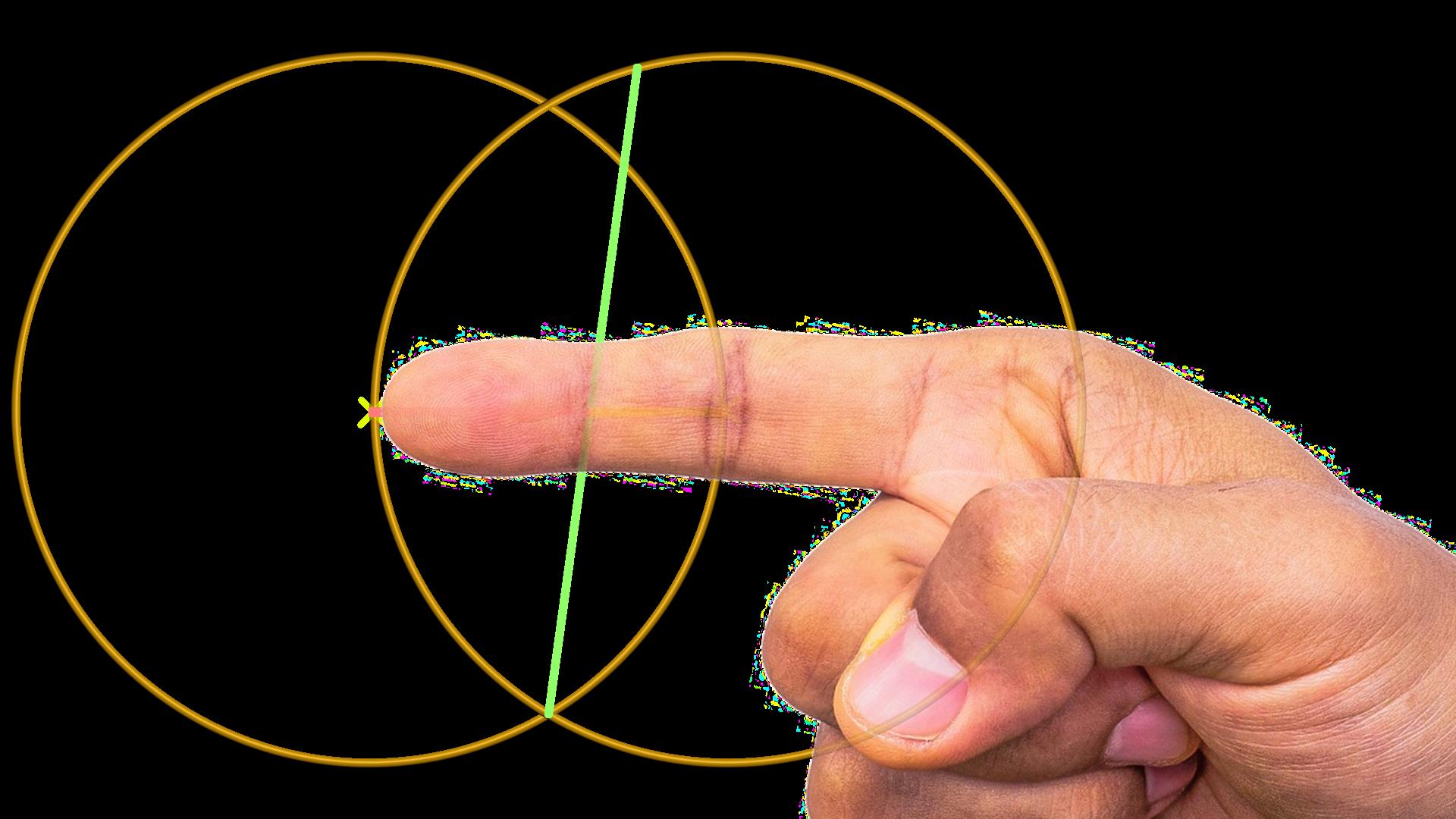 Finger mit goldenem Schnitt