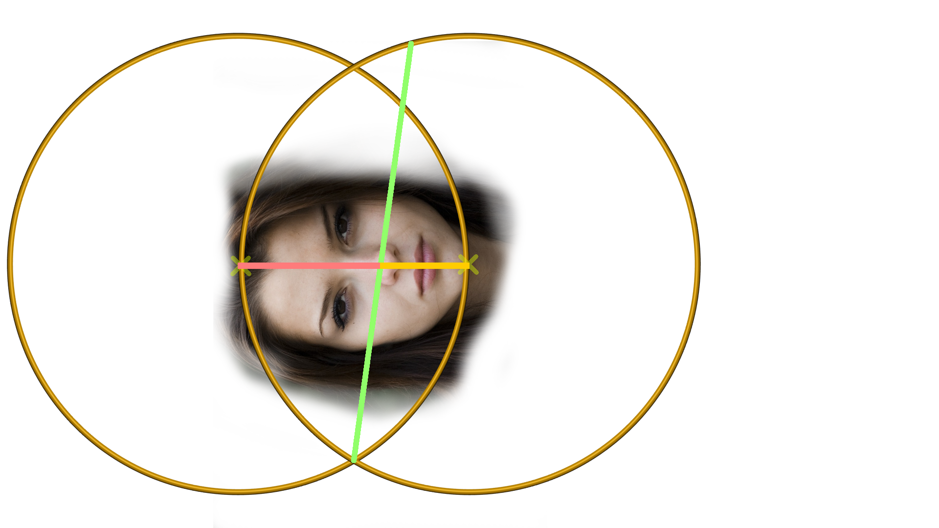 der goldene Schnitt: Das Gesicht mit dem goldenem Schnitt